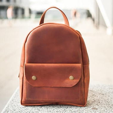 Light Brown Stylish Backpack